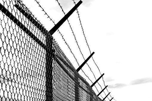 Barbed Wire, Fence, Old, Verrostst, Wire, Imprisoned