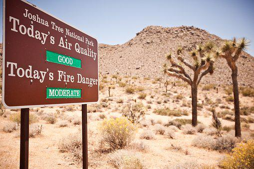 Usa, Travel, Joshua Tree, National Park, Fire, Risk