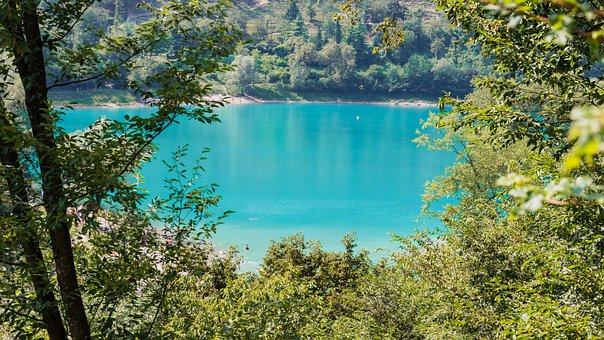 Lake, Water, Idyll, Badesee, Green, Summer, Tenno Lake