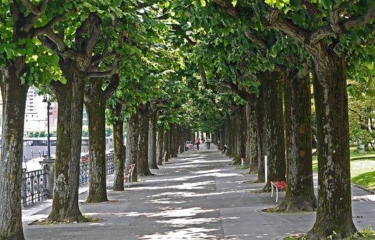 Lugano, Lake Promenade, Avenue, Ticino, Switzerland