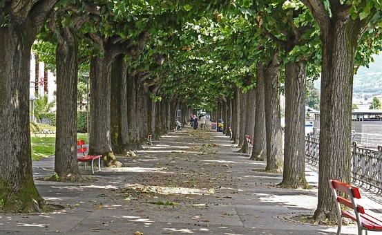 Lugano, Ticino, Switzerland, Promenade, Lake Lugano