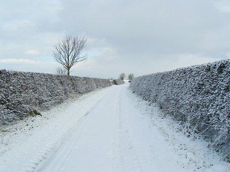 Snow, Lane, Road, Landscape, Winter, Cold, White
