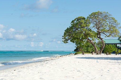 Beach, Dharavandhoo, Baa, Maldives