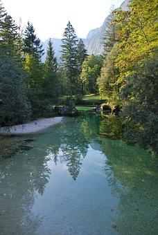 Slovenia, Bohinj, Lake, Nature, Background, Green, Blue