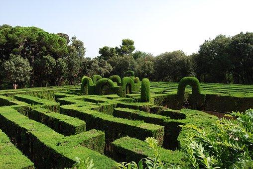 Maze, Green, Labyrinth, Hedge, Schlossgarten, Garden