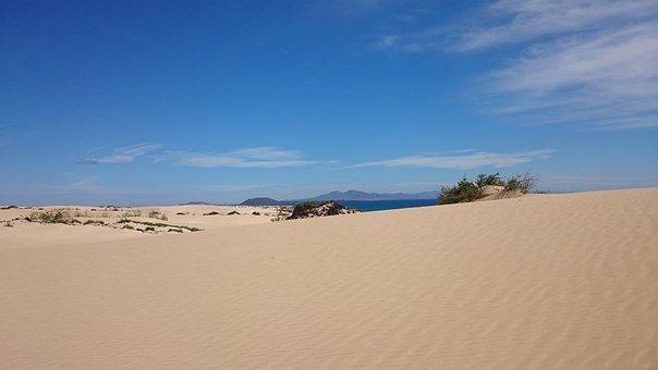 Dunes, Sand, Corralejo, The Olive, Fuerteventura