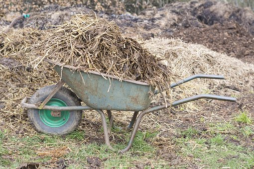 Manure, Wheelbarrow, Wheelbarrows, Waste, Agriculture