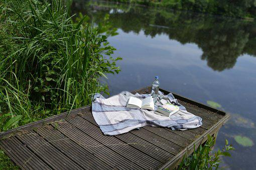 Book, Picnic, Park, Summer, Reading, Nature
