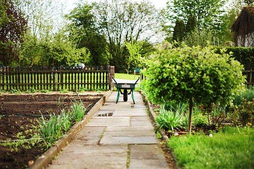 Wheelbarrows, Garden, Karrette, Rolli, Push Carts