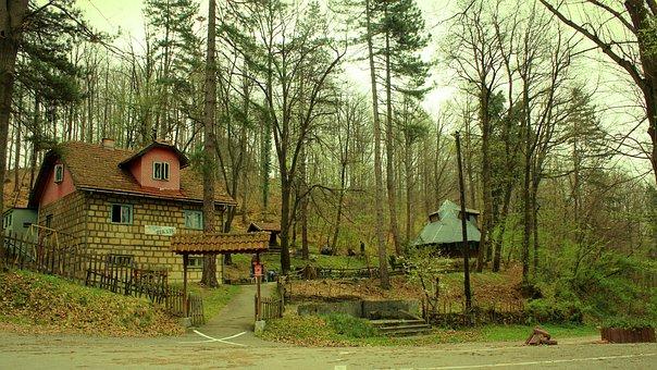 Tuzla, Bosnia, Forest, Picnic, Nature, Herzegovina