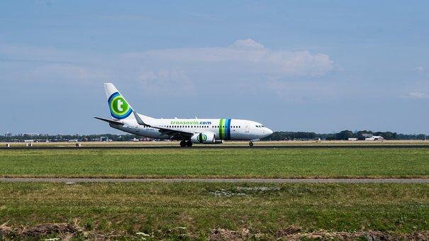 Plane, Schiphol, Transavia, Fly, Travel, Landing