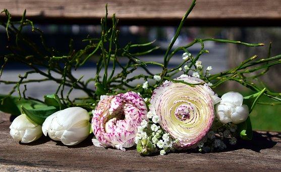 Flowers, Ranunculus, Blossom, Bloom, White, Spring