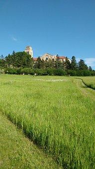 Church Building, Cloister, Field