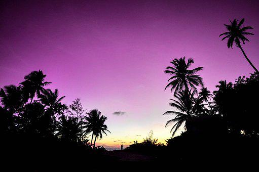 Atoll, Beach, Couple, Destination, Holiday, Honeymoon