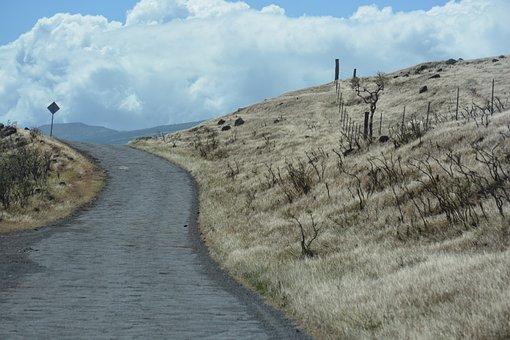 Road, Hawaii, Island, Travel, Maui, Hawaiian, Landscape