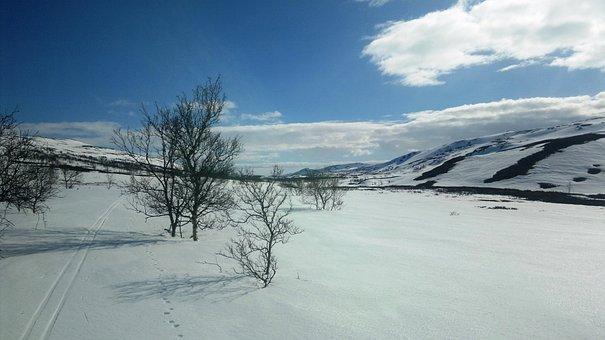 Porsanger, Lakselv, Snow, Winter