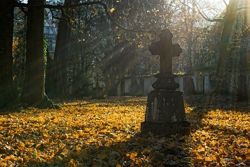 Autumn, Autumn Leaves, Autumn Light, Cemetery, Cross