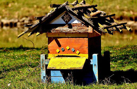 Beehive, Bees, Wood, Colorful, Wildpark Poing
