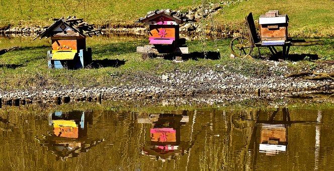 Bee Hives, Wood, Bees, Wild Bees, Animals, Box
