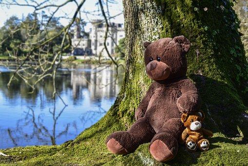 Teddy, Soft Toy, Toy, Bear, Soft, Cute, Happy
