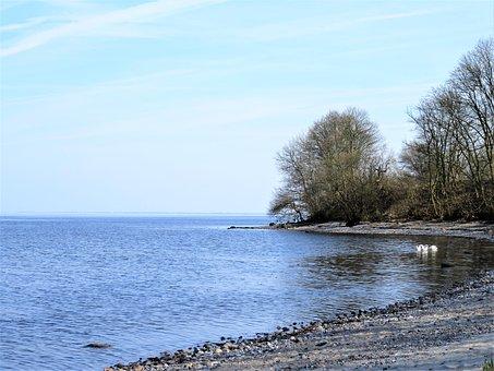 Sea, Lake, Danish Baltic Sea Coast, Little Bay