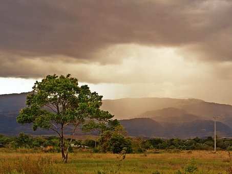 Casanare, Sunset, Tree, Mountains, Landscape, Colombia