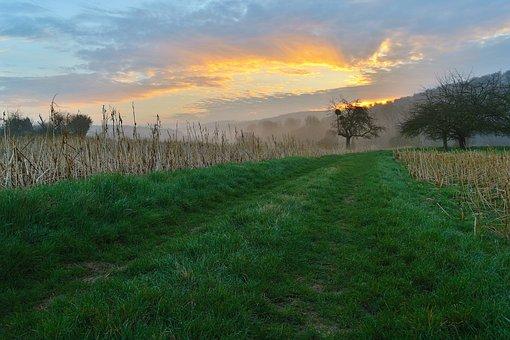 Sunrise, Landscape, Pfinztal, Nature