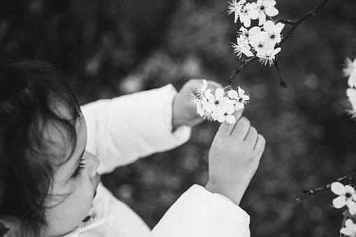 Little Girl And Flower, White Flower, Black And White