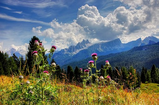 Croda Da Lago, Dolomites, Belluno, Blue, Sky, Summer