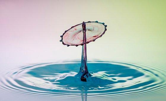 Water, Drip, Drop Of Water, Liquid