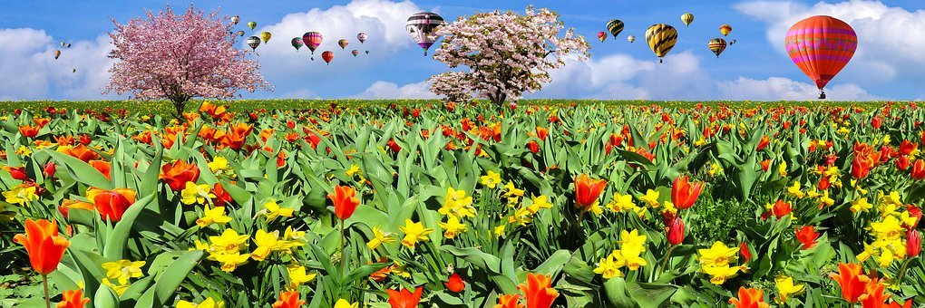 Nature, Spring, Flying, Balloon, Flowers, Tulips