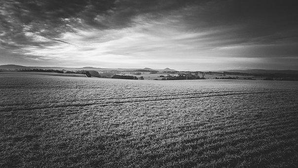 Field, Landscape, Nature, Rural, Nature Landscape