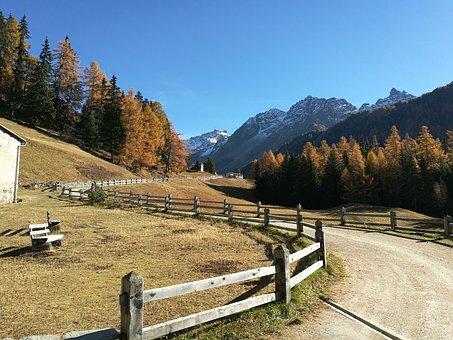 The Val Field, Switzerland, Nature