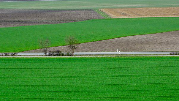 Agriculture, Green, Countryside, Nature, Plant, Fresh
