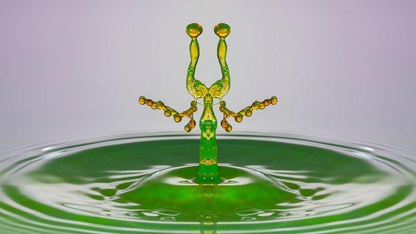 Water, Drip, Drop Of Water, Hochspringender High Drop