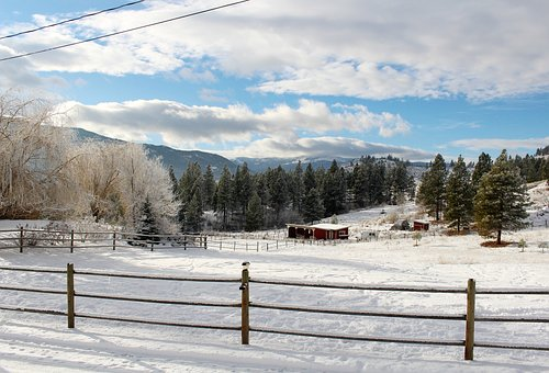 Winter, Winter Wonderland, Snow, Nature, Frost, Cold