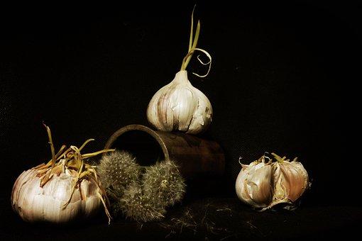 Garlic, Still Life, Staging, Calendar, Dandelion