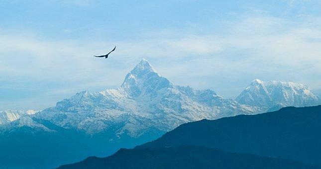 Mountain, Sky, Foggy, Bird, Nepal, Macchapuchhre