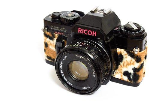Analog, Camera, Leopard, Fashion, Plush, Ricoh, Sweet