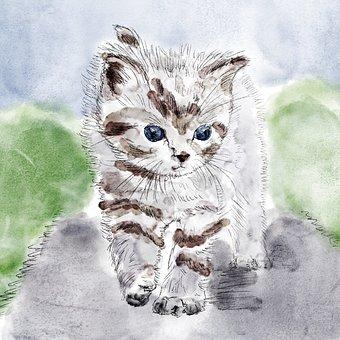 Cat, Kitten, Drawing, Chick, Grey, Watercolor