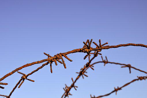 Wire, Rusty, Fence, Hurt, Pain, Barrier, Metallic