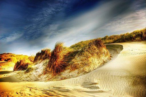 Dunes, Denmark, North Sea, Beach, Sea, Sky, Holiday