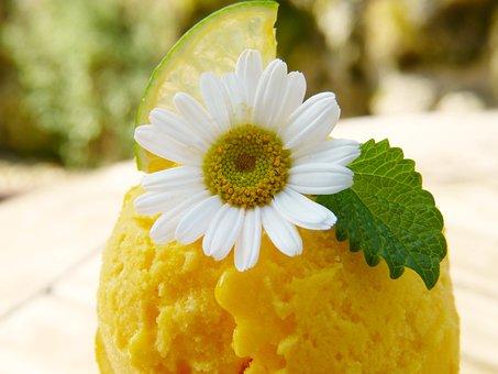 Mango Ice Cream, Fruit Ice Cream, Ice Cream, Ice