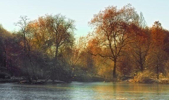 Morning Light, Nature, Mood, Fog, Landscape