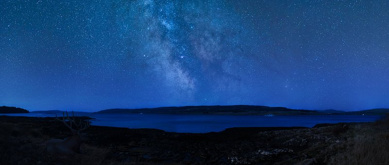 Night Sky, Stag, Scotland, Isle Of Mull, Stars, Ocean