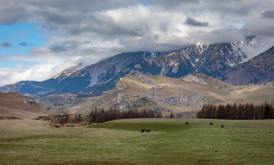 New Zealand, South Island, Southern Alps, Castle Hill