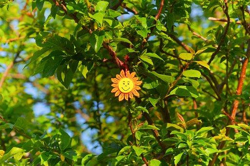 Summer, Spring, Sun, Leaves, Joy, Tree, Living Nature