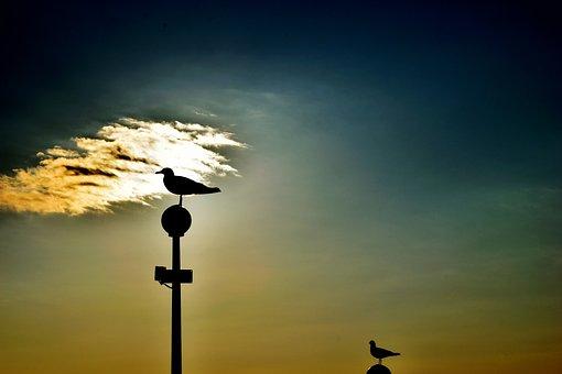 Sky, Sea, Ocean, Summer, Nature, Water, Travel, Blue