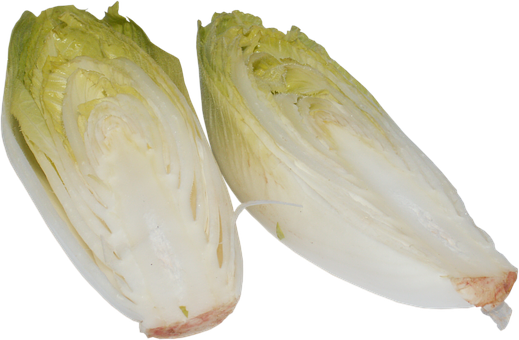 Chicory, A Vegetable, Vegetables, Plant, Cabbage