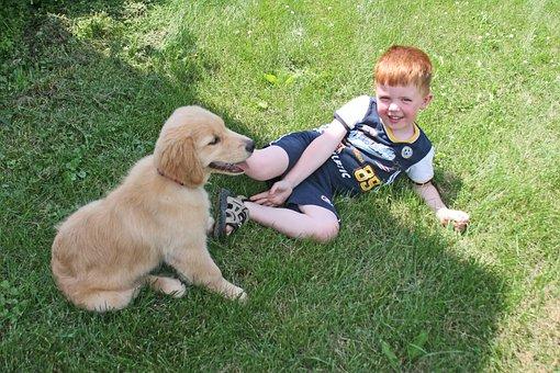 Puppy, Boy, Dog, Cute, Love, Kid, Smile, Playful